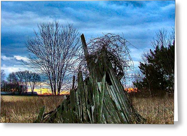The Woodstack Greeting Card by Julie Dant