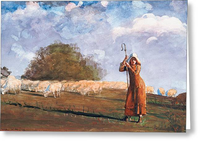 The Young Shepherdess Greeting Card by Winslow Homer