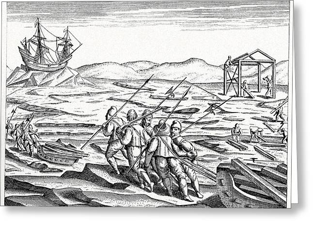 Third Age Greeting Cards - Third Barents Arctic Expedition, 1596 Greeting Card by Cci Archives