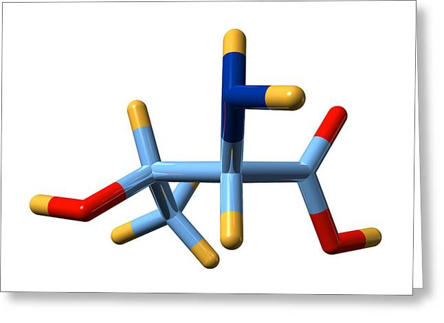 Essential Greeting Cards - Threonine, Molecular Model Greeting Card by Dr Mark J. Winter