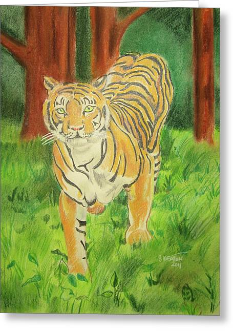 Tiger On The Prowl Greeting Card by John Keaton