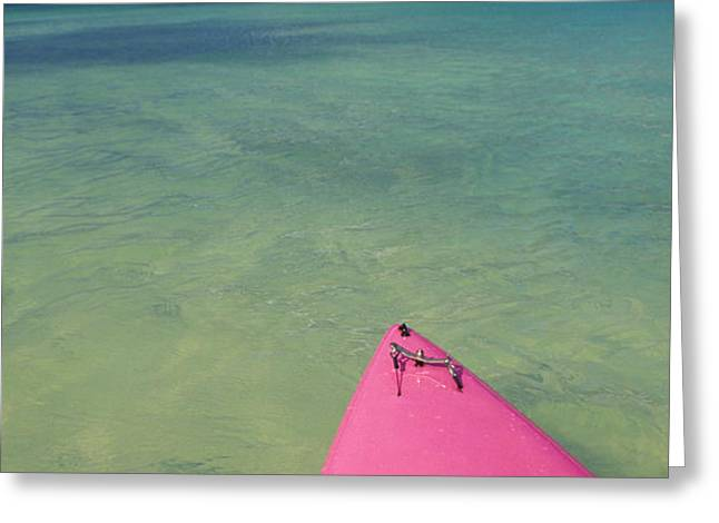 Tip Of Pink Kayak Greeting Card by David Cornwell/First Light Pictures, Inc - Printscapes