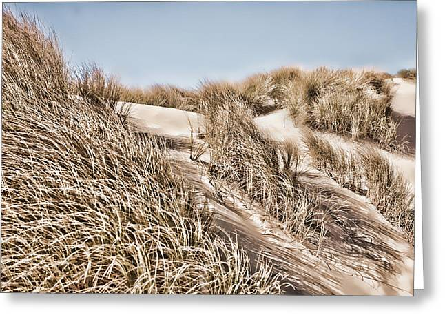 Sand Dunes Mixed Media Greeting Cards - Tranquility Greeting Card by Bonnie Bruno