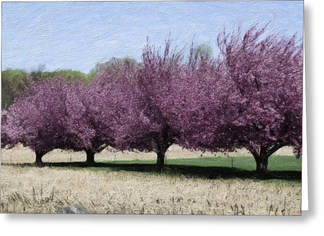 Trees On Warwick Greeting Card by Trish Tritz