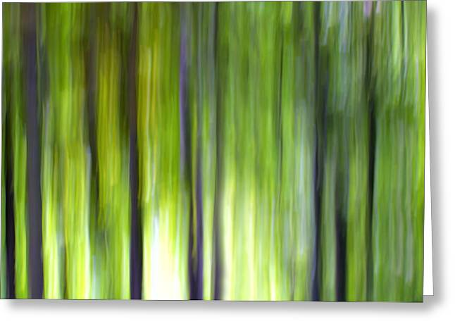 Decorativ Photographs Greeting Cards - Trees Greeting Card by Silke Magino