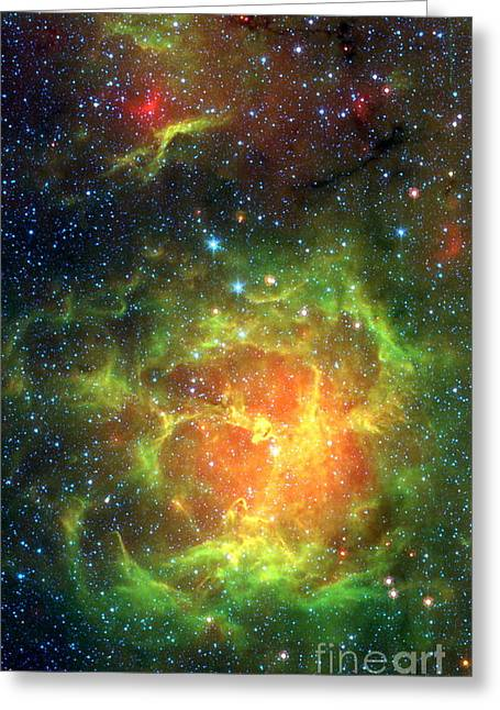 Stellar Formation Greeting Cards - Trifid Nebula Greeting Card by NASA / Science Source