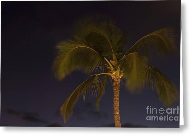 Tropical Paradise Greeting Card by Sharon Mau