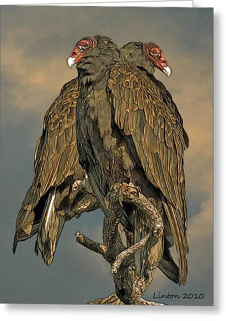 Vulture Greeting Cards - Turkey Vulture Pair Greeting Card by Larry Linton