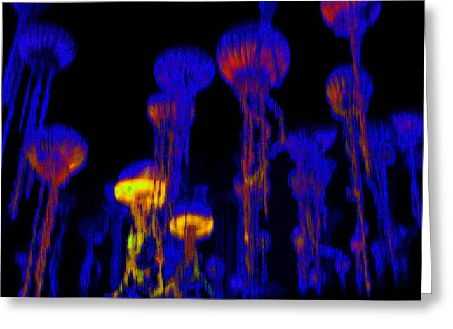 Jellyfish Art Greeting Cards - Up from the Deep Greeting Card by David Lee Thompson