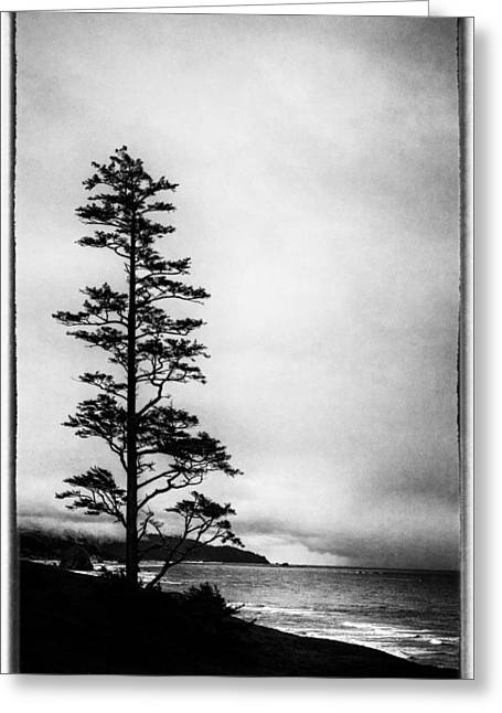 Lanscape Greeting Cards - View of Cannon Beach from Ecola State Park Greeting Card by David Patterson