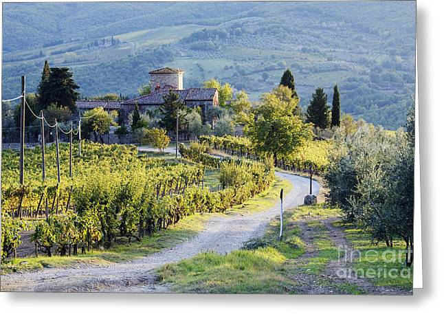 Grapevines Greeting Cards - Vineyards and Farmhouse Greeting Card by Jeremy Woodhouse