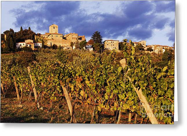 Chianti Greeting Cards - Vineyards Greeting Card by Jeremy Woodhouse
