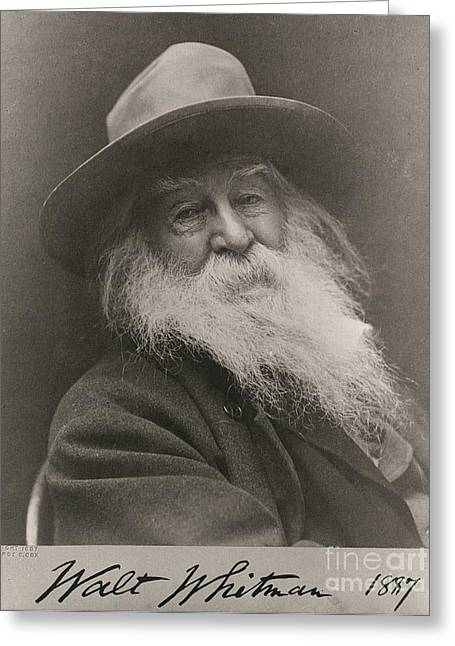 Leaves Of Grass Greeting Cards - Walt Whitman Greeting Card by Photo Researchers