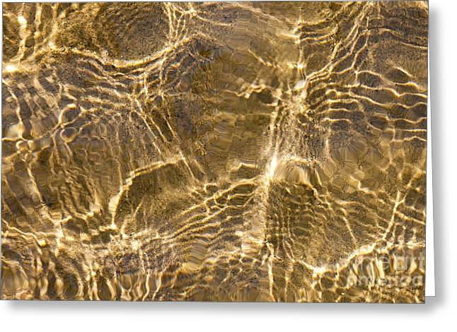 Sand Pattern Greeting Cards - Water and sand ripples Greeting Card by Elena Elisseeva