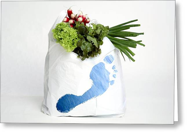 Shopping Bag Greeting Cards - Water Footprint Of Vegetables Greeting Card by Victor De Schwanberg