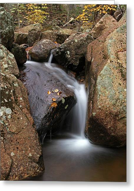 Maine Spring Greeting Cards - Waterfall In Acadia National Park Greeting Card by Juergen Roth