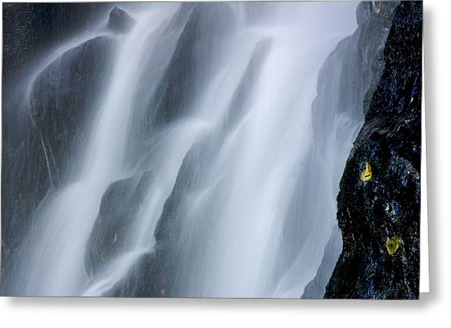 Spraying Greeting Cards - Waterfall of Vaucoux. Puy de Dome. Auvergne. France Greeting Card by Bernard Jaubert