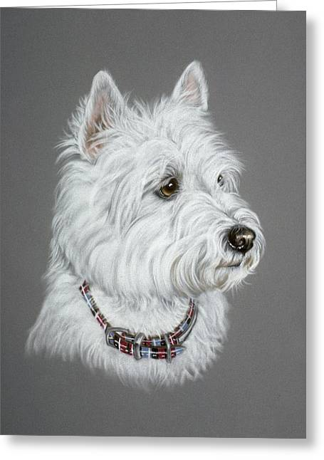 Terrier Pastels Greeting Cards - West Highland White Terrier  Greeting Card by Patricia Ivy