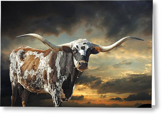 Texas Greeting Cards - West of El Segundo Greeting Card by Robert Anschutz
