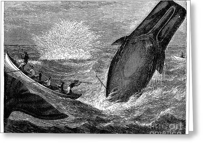 19th Century America Photographs Greeting Cards - WHALING, 19th CENTURY Greeting Card by Granger