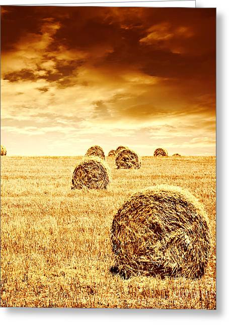 Hay Bales Greeting Cards - Wheat harvest time Greeting Card by Anna Omelchenko