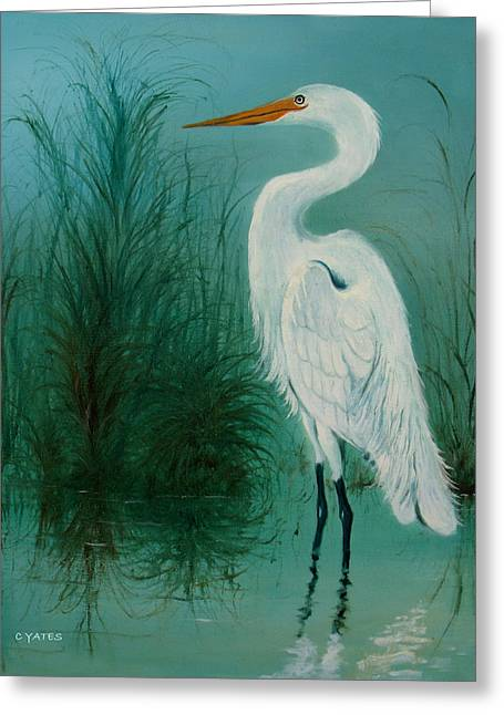 Wadding Greeting Cards - White Egret 2 Greeting Card by Charles Yates
