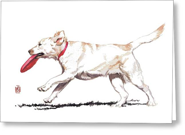 Debra Jones Greeting Cards - White Frisbee Dog Greeting Card by Debra Jones