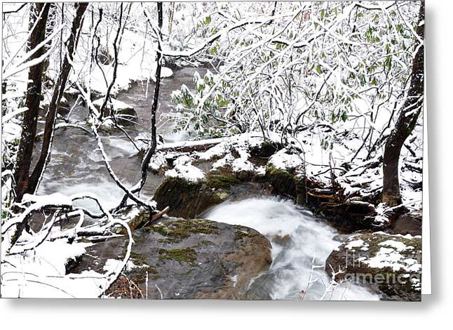 West Virginia Snow Scene Greeting Cards - White Oak Run Greeting Card by Thomas R Fletcher