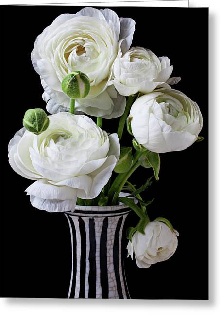 White Florals Greeting Cards - White ranunculus in black and white vase Greeting Card by Garry Gay