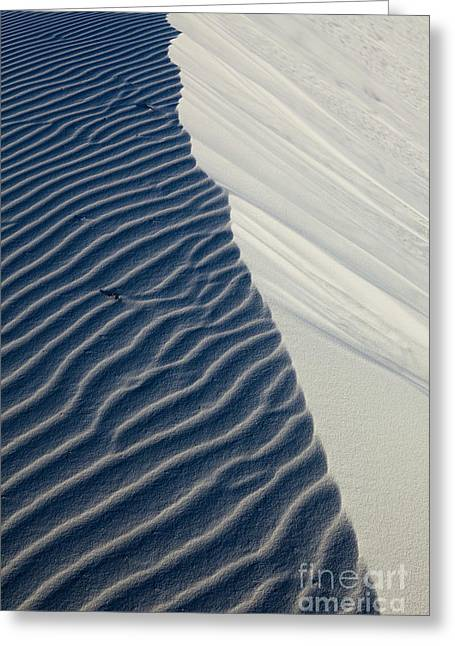 Sand Pattern Greeting Cards - White Sands Greeting Card by Keith Kapple