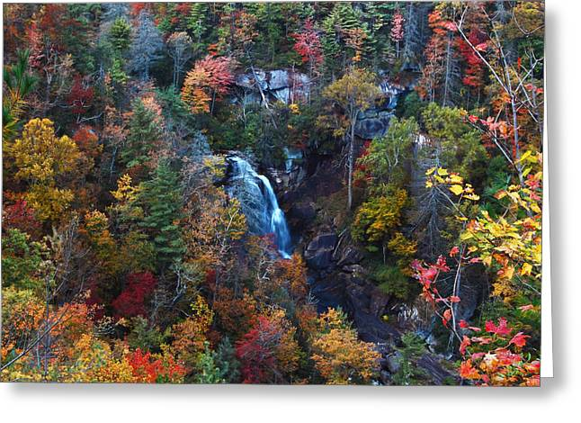 Donnie Smith Greeting Cards - Whitewater Falls Greeting Card by Donnie Smith