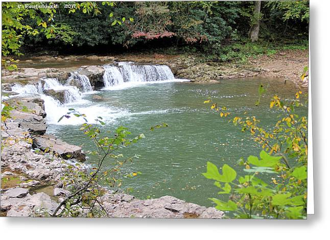 Catch And Release Greeting Cards - Whittaker Falls Greeting Card by Carolyn Postelwait