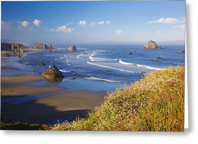 Best Sellers -  - State Parks In Oregon Greeting Cards - Wildflowers And Rock Formations Along Greeting Card by Craig Tuttle