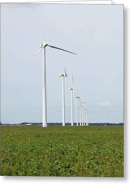 Generators Greeting Cards - Wind Turbines, Netherlands Greeting Card by Colin Cuthbert