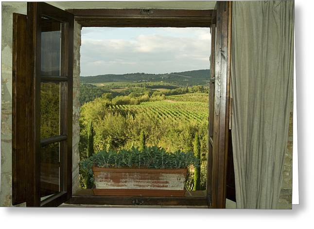 Window Looking Out Across Vineyards Greeting Card by Todd Gipstein
