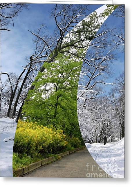Digital Montage Greeting Cards - Winter and Summer Greeting Card by Oleksiy Maksymenko