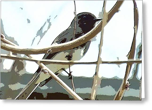 Bird On A Vine In The Winter Greeting Cards - Winter Bird Greeting Card by Artist and Photographer Laura Wrede