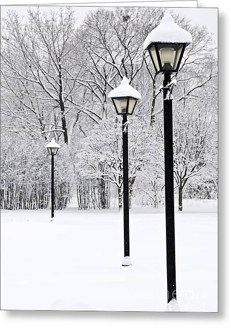 Winter Scenery Greeting Cards - Winter park Greeting Card by Elena Elisseeva