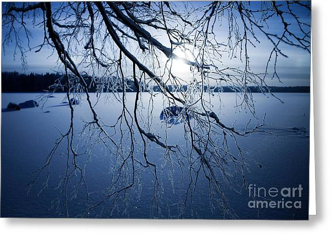 Snowy Evening Greeting Cards - Winter sunset Greeting Card by Kati Molin