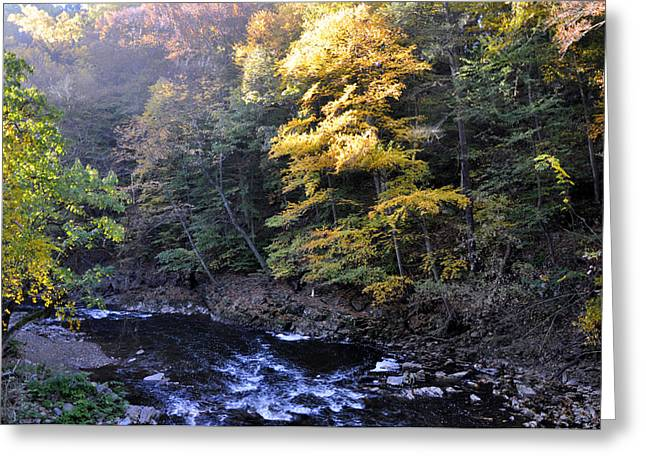 Wissahickon Creek Greeting Cards - Wissahickon Creek Greeting Card by Andrew Dinh