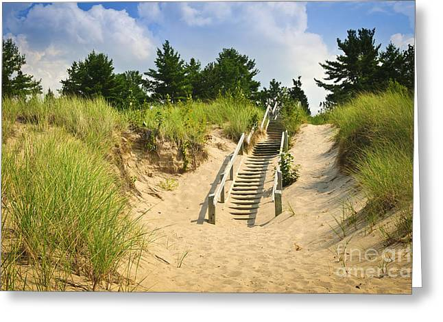 Recreational Park Greeting Cards - Wooden stairs over dunes at beach Greeting Card by Elena Elisseeva