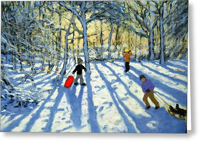 Fresh Snow Greeting Cards - Woodland in winter Greeting Card by Andrew Macara