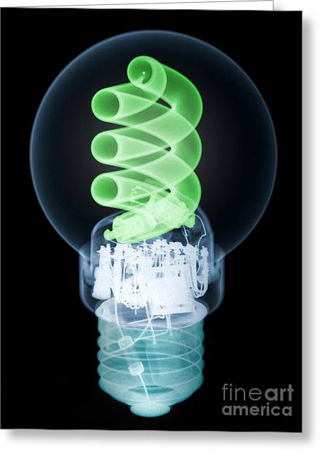 Energy Efficiency Greeting Cards - X-ray Of Energy Efficient Light Greeting Card by Ted Kinsman