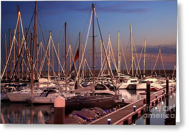 Yellow Sailboats Photographs Greeting Cards - Yacht Marina Greeting Card by Carlos Caetano