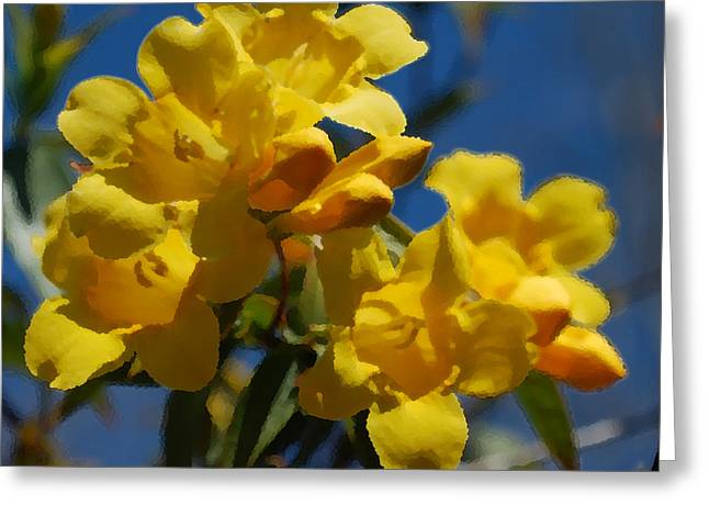 Jessamine Greeting Cards - Yellow Jasmine Greeting Card by Gordon Mooneyhan