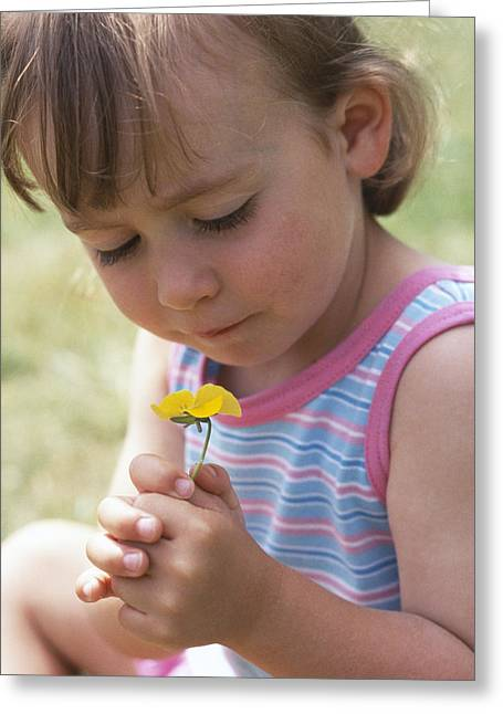 3 Year Old Girl Greeting Cards - Young Girl With A Flower Greeting Card by Ian Boddy