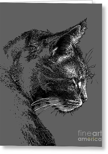 Pictures Of Cats Greeting Cards - Zachary Greeting Card by Dale   Ford