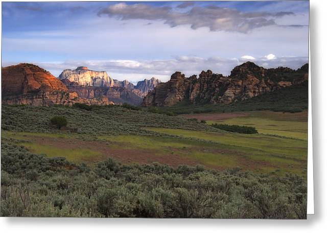 Best Sellers -  - Slickrock Greeting Cards - Zion National Park Utah Greeting Card by Utah Images