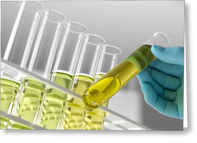 Bioenergy Greeting Cards - Biofuel Research Greeting Card by Tek Image