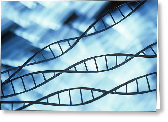 Dna Model Greeting Cards - Dna Helices Greeting Card by Lawrence Lawry
